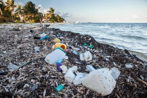 Plastic waste is everywhere