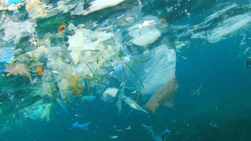 Plastic trash in sea