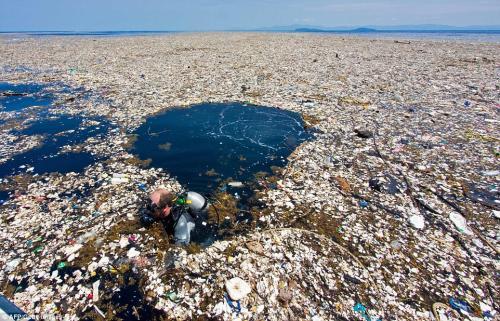 Plastic in the Caribbean