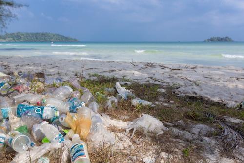 Plastic debris on a tropical beach