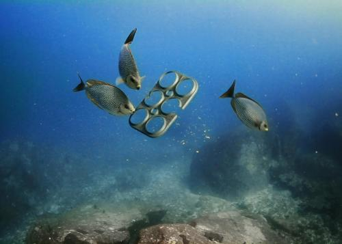 Six pack rings kill a lot of sea creatures